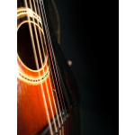 1929_Gibson_L3_PG_04