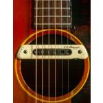 Gibson LG-2 19