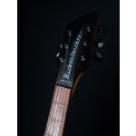 Rickenbacker360_1
