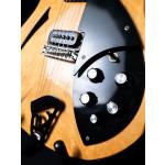Rickenbacker360_3